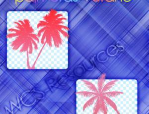 椰子树photoshop笔刷素材下载