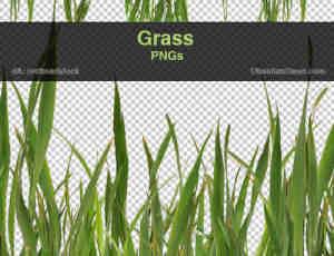真实的高分辨率青草、小草、草地photoshop笔刷素材