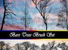 9种真实的树木剪影、阴影效果photoshop笔刷素材