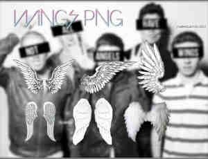6种天使羽翼翅膀与真实的羽毛天使翅膀PNG【美图秀秀】素材下载