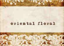 东方古典花卉图案边框photoshop笔刷素材