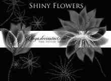 梦幻点珠子鲜花花朵photoshop笔刷素材