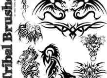 漂亮的中西方龙形纹身、刺青PS图案笔刷素材