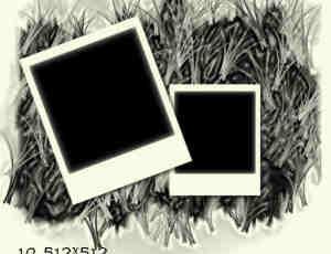 拍立得照片、宝利来相片边框背景photoshop笔刷素材 #.4