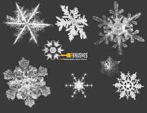 真实的冰晶、雪花图案素材photoshop笔刷下载