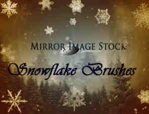 冰天雪地、雪景、雪花、冰晶photoshop笔刷素材下载