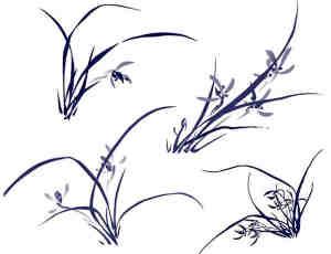 中国风水墨兰花图案PS笔刷素材下载