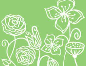 小清新手绘线条花纹图案photoshop笔刷素材
