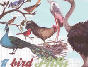已扣图!孔雀、鸵鸟、野鸡等鸟类图形【美图秀秀素材包】
