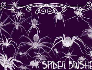 23个蜘蛛Photoshop笔刷打包下载