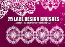 25种高分辨率蕾丝花纹图案图形Photoshop笔刷素材