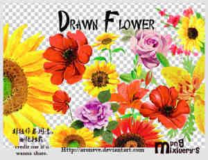 鲜艳花朵png图片素材【美图秀秀素材包】