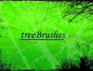 阴森的森林背景Photoshop笔刷素材