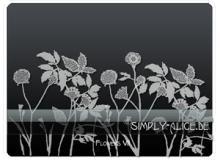 漂亮的植物花纹照片美图背景边框饰品PS笔刷 #.7