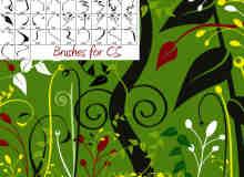 植物花纹Photoshop笔刷免费下载