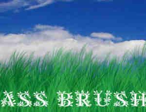 CG仿真草丛、草原、草丛Photoshop笔刷素材