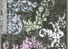 漂亮的植物花纹照片美图背景边框饰品PS笔刷 #.25