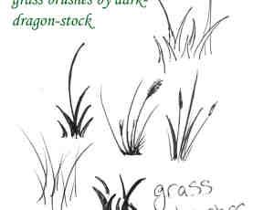 手绘简单青草、狗尾草、野草、小草Photoshop笔刷