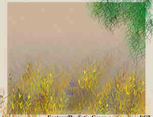 CG草植物Photoshop笔刷