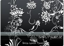 漂亮的植物花纹照片美图背景边框饰品PS笔刷 #.18