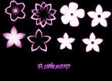 可爱樱花花朵Photoshop笔刷素材