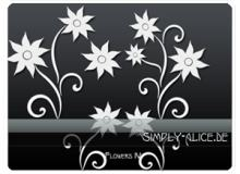 漂亮的植物花纹照片美图背景边框饰品PS笔刷 #.10