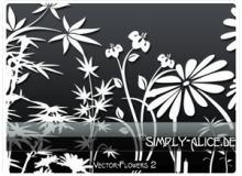 漂亮的植物花纹照片美图背景边框饰品PS笔刷 #.17