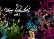 漂亮的植物花纹照片美图背景边框饰品PS笔刷 #.34