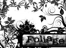 漂亮的植物花纹照片美图背景边框饰品PS笔刷 #.35