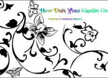 漂亮的植物花纹照片美图背景边框饰品PS笔刷 #.40
