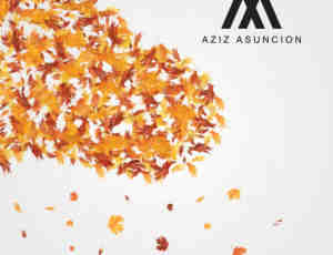 落叶、梧桐叶PS树叶笔刷素材
