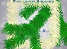 圣诞节树枝装饰、松针叶PS绘画笔刷