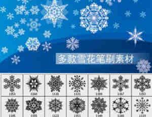 漂亮的新年圣诞节雪花Photoshop笔刷