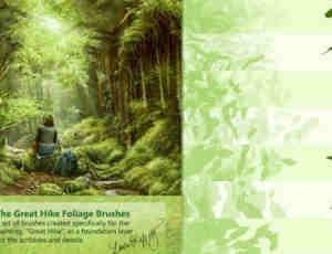 树叶、落叶、叶子Photoshop笔刷素材