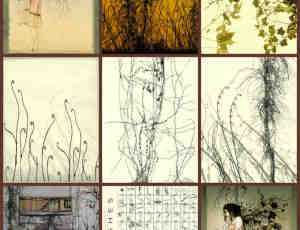 印象藤蔓植物素材Photoshop高品质笔刷
