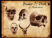人体骷髅头、羊角骷髅头Photoshop笔刷素材