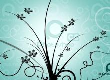 漂亮的植物花纹照片美图背景边框饰品PS笔刷 #.66