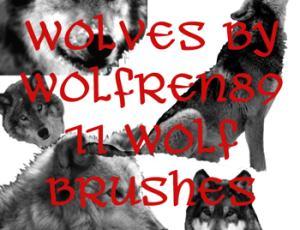 狼素材Photoshop动物笔刷 #.2