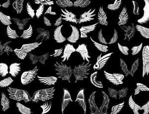 超多天使翅膀、羽翼翅膀Photoshop笔刷素材