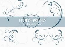漂亮的植物花纹照片美图背景边框饰品PS笔刷 #.78