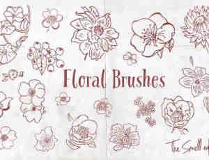 漂亮的手绘植物鲜花花朵图案PS笔刷下载