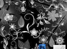 漂亮的植物花纹照片美图背景边框饰品PS笔刷 #.74