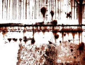 真实血迹伤口、创伤Photoshop笔刷