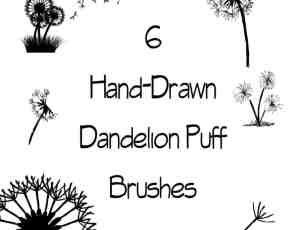 6种蒲公英花朵Photoshop笔刷下载