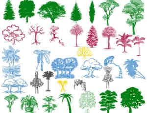 印刷版式树木、大树、树林Photoshop笔刷素材