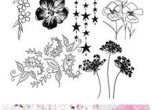 漂亮的植物花纹照片美图背景边框饰品PS笔刷 #.79