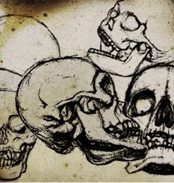 恐怖骷髅头素描图案PS笔刷-人物笔刷 第 9 页图片