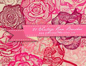 鲜艳的玫瑰花朵、玫瑰花纹图案Photoshop笔刷素材