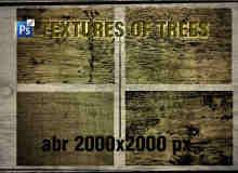 老旧树木、树皮纹理效果PS笔刷素材下载