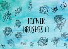 漂亮的手绘鲜花、线框式花朵PS笔刷下载